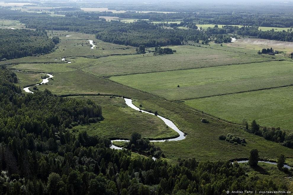 Jõgi Varstu lähistel