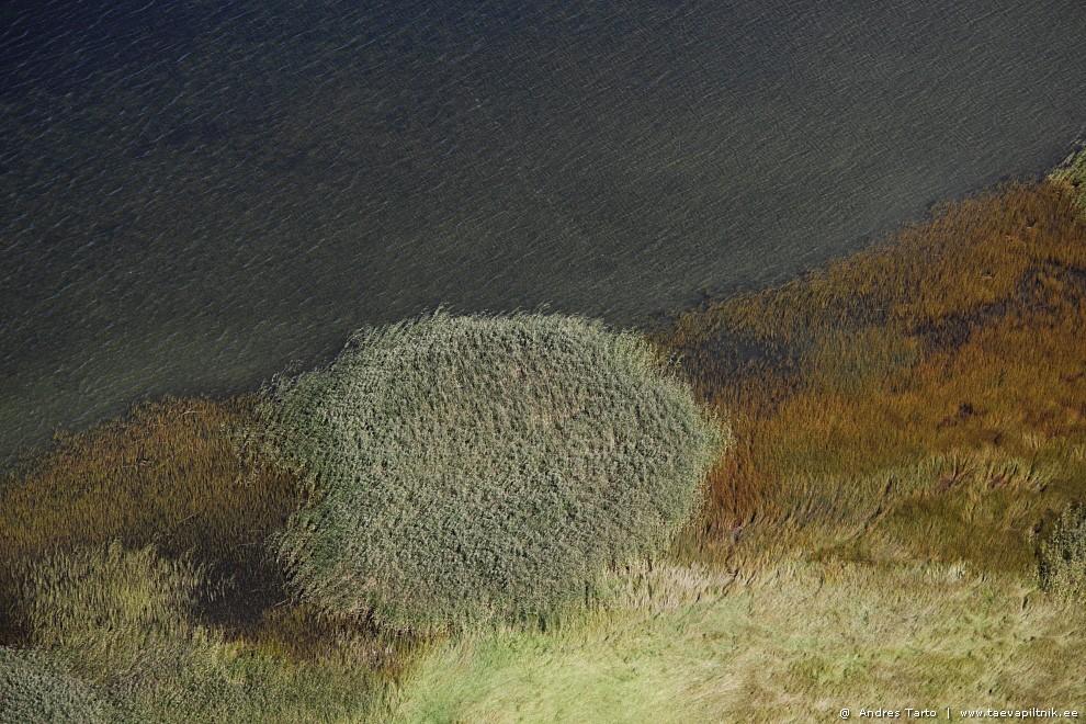 Saare ranniku pehmed pinnad ja värvid
