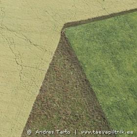 Eesti nurgelised põllud.