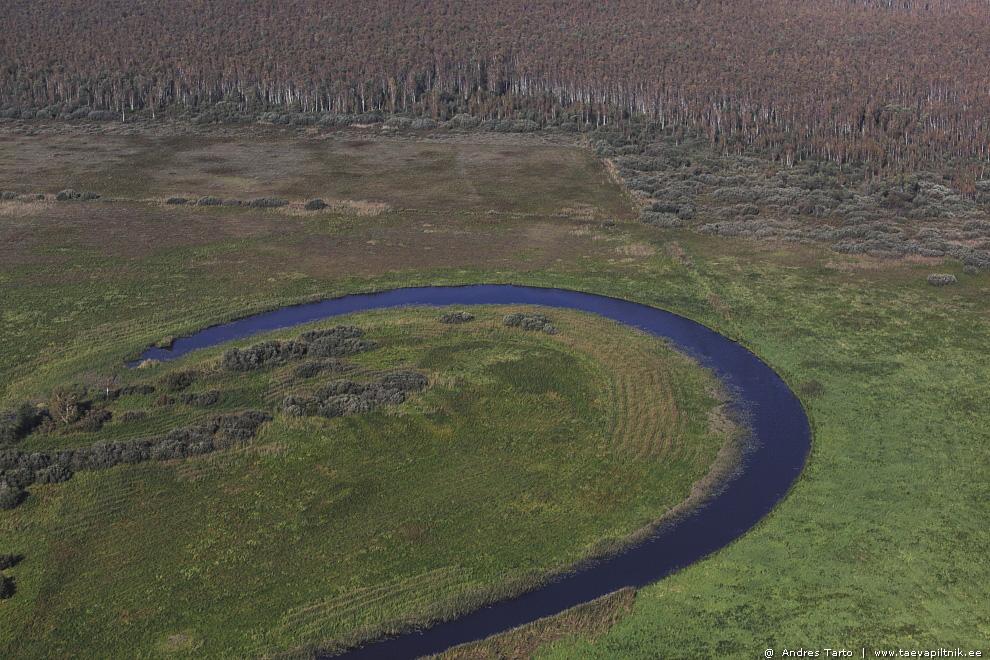Kaunis jõekaar Emajõe luhal